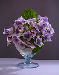 flori mov