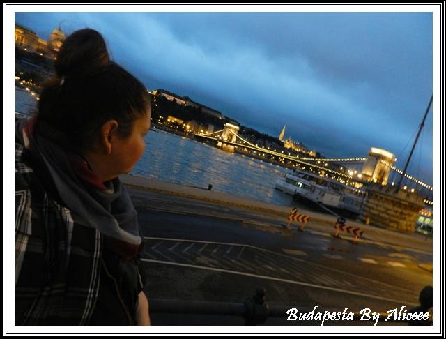 Ungaria-Budapesta-malul-Dunarii-panorama