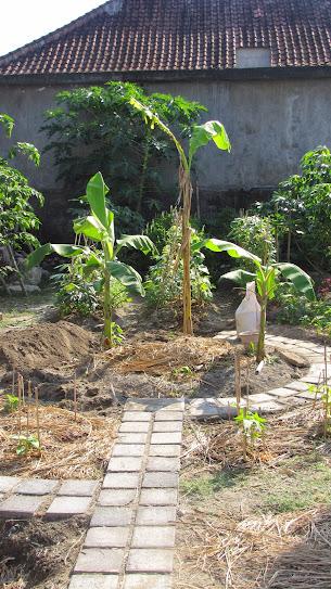 Bali Indonesia helpx