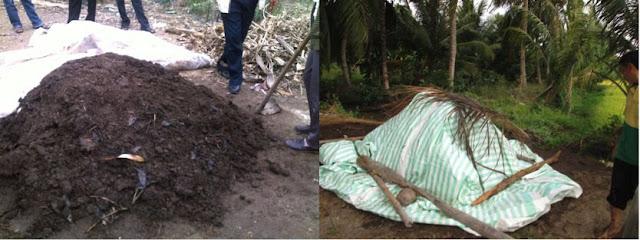 Mô hình ủ phân phân hữu cơ (Compost) ở Trà Vinh