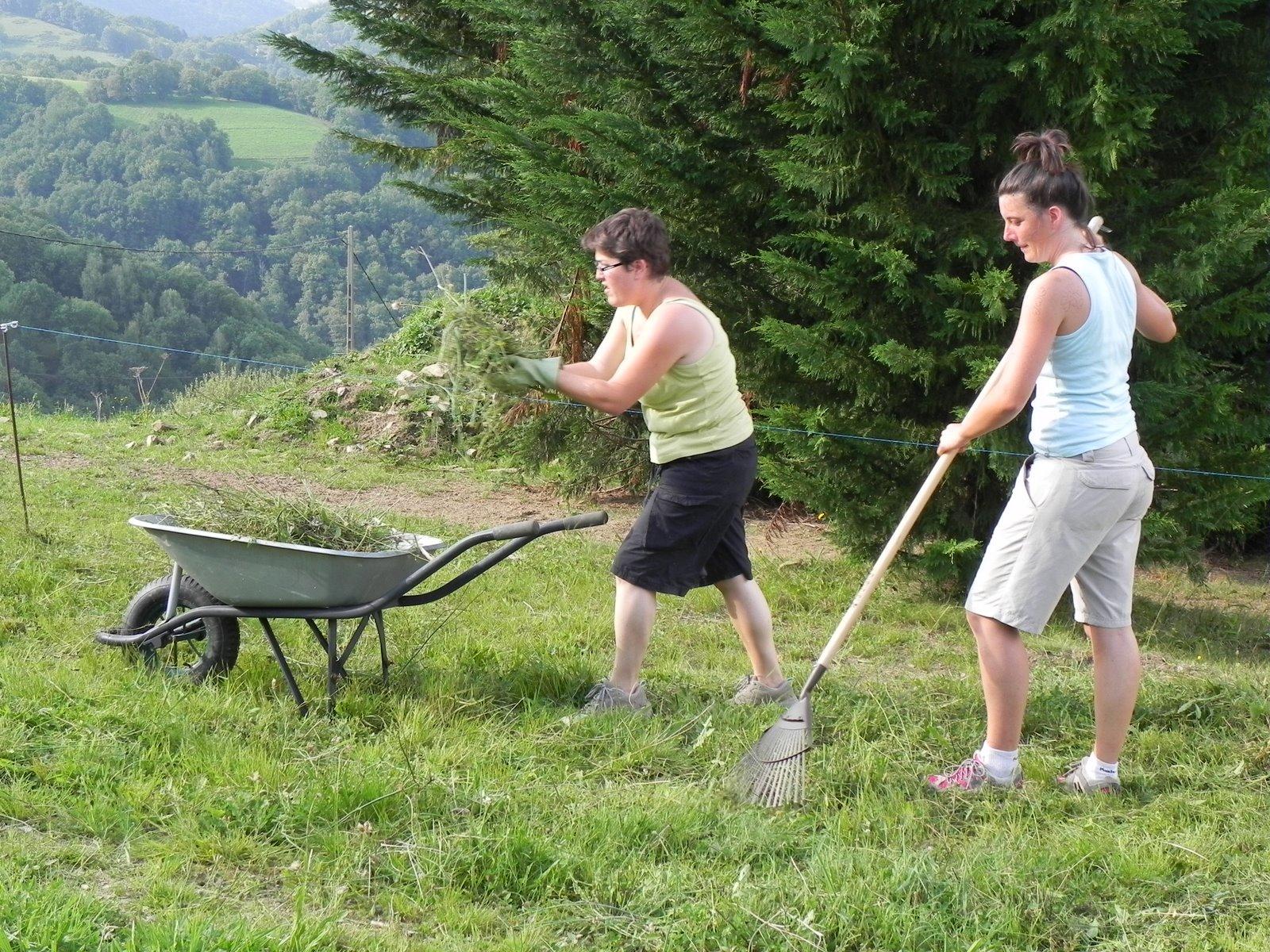 Sl97 jardinage pour tout le monde for Jardinage le monde