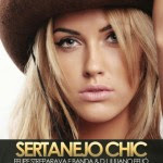 Baixar CD Sertanejo Chic Dez Vol.17 (2014) Download