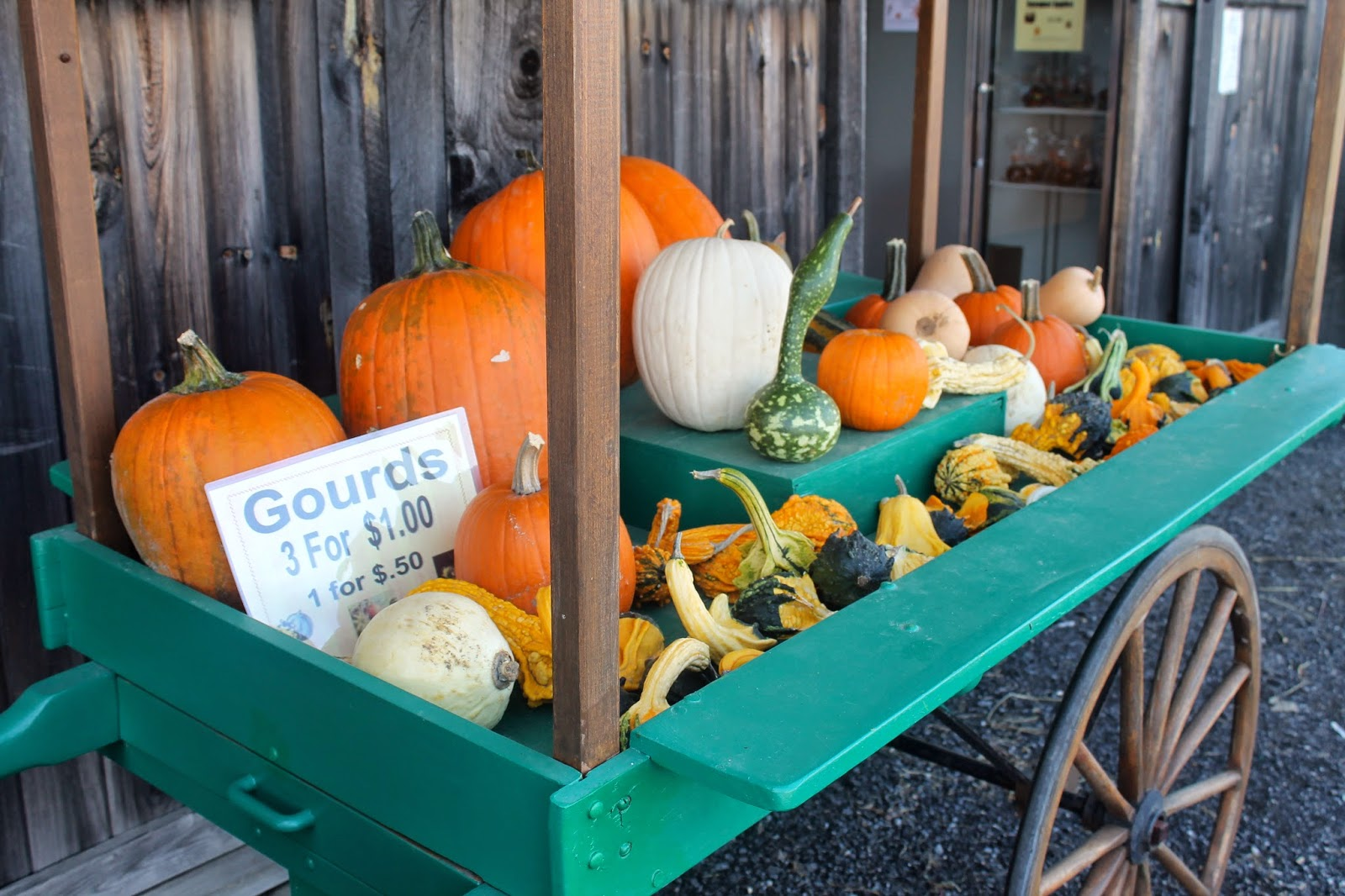 pumpkins, gourds sign