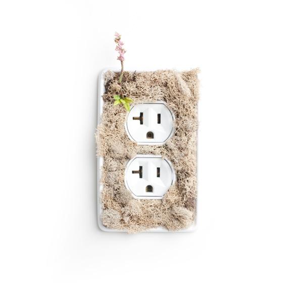 Blog enchufes e interruptores verdes - Enchufes e interruptores ...