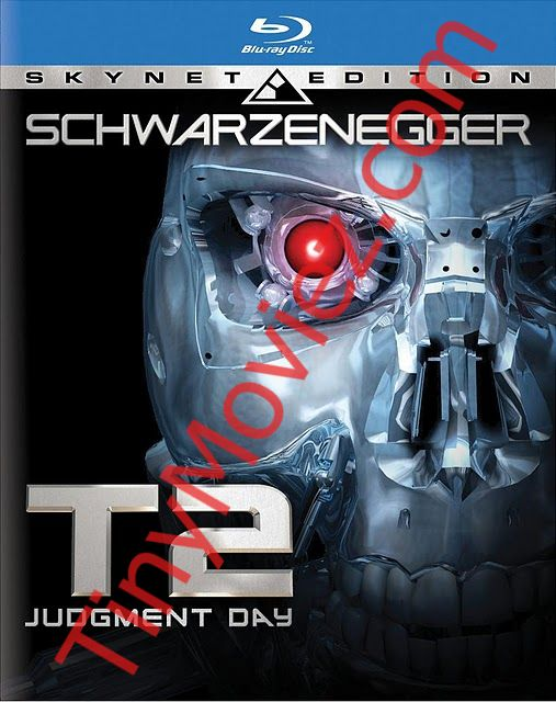 judgment day terminator. [Terminator 2 Judgment Day]