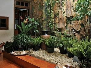 10 contoh gambar gambar taman rumah minimalis - inspirasi