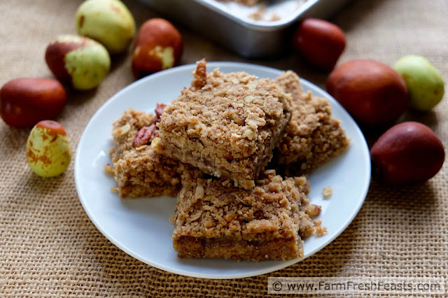 http://www.farmfreshfeasts.com/2015/10/jujube-butter-oatmeal-bars.html