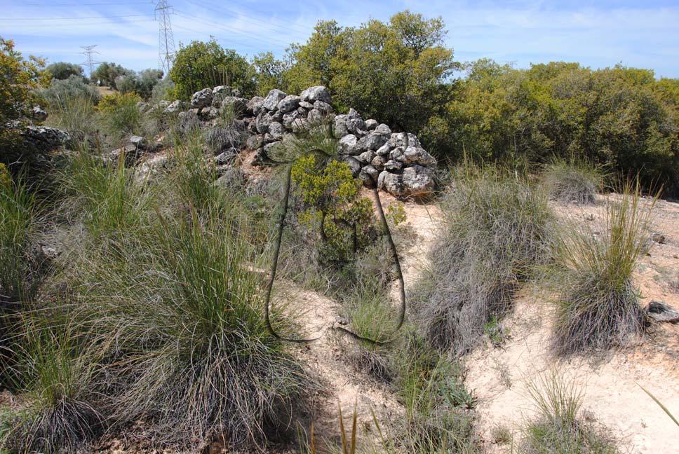Muro sobre terraplenado