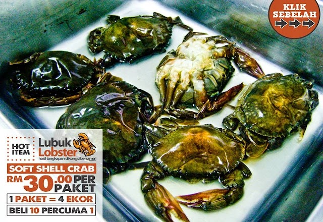 LUBUK LOBSTER : Ketam Kulit Lembut (soft shell crab)