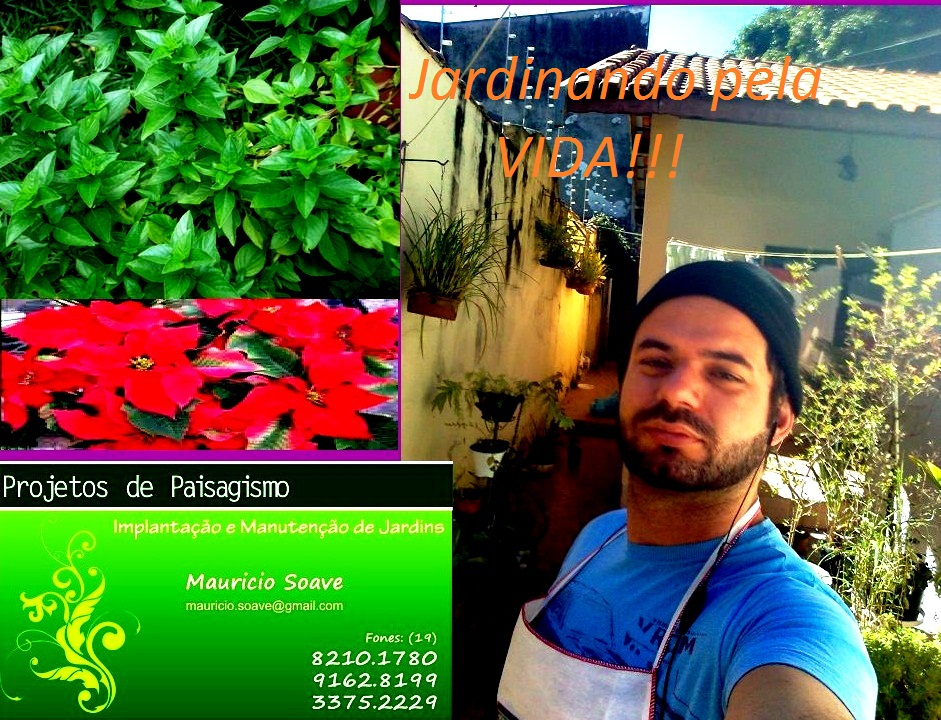 Jardinando pela Vida