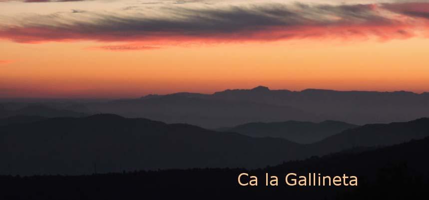 Blog del Màrius Domingo, Ca la Gallineta