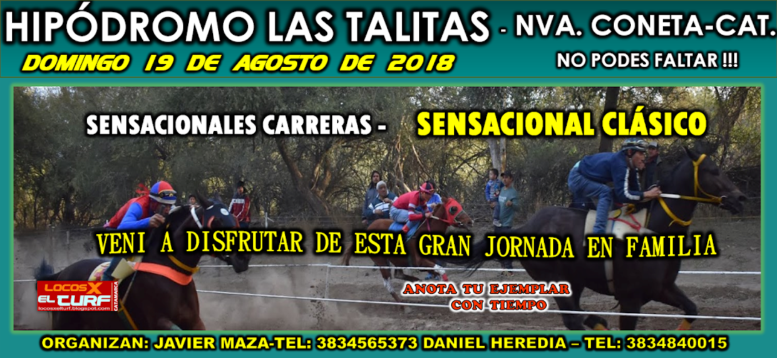 19-08-HIP. LAS TALITAS