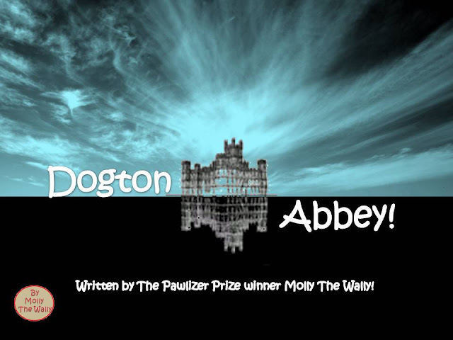 Dogton Abbey Blog, We Are Not A Fan Of The Creepy Crawley Clan!