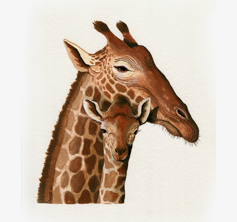 http://www.applearts.com/content/giraffe-original-wildlife-animal-illustration-painting-art