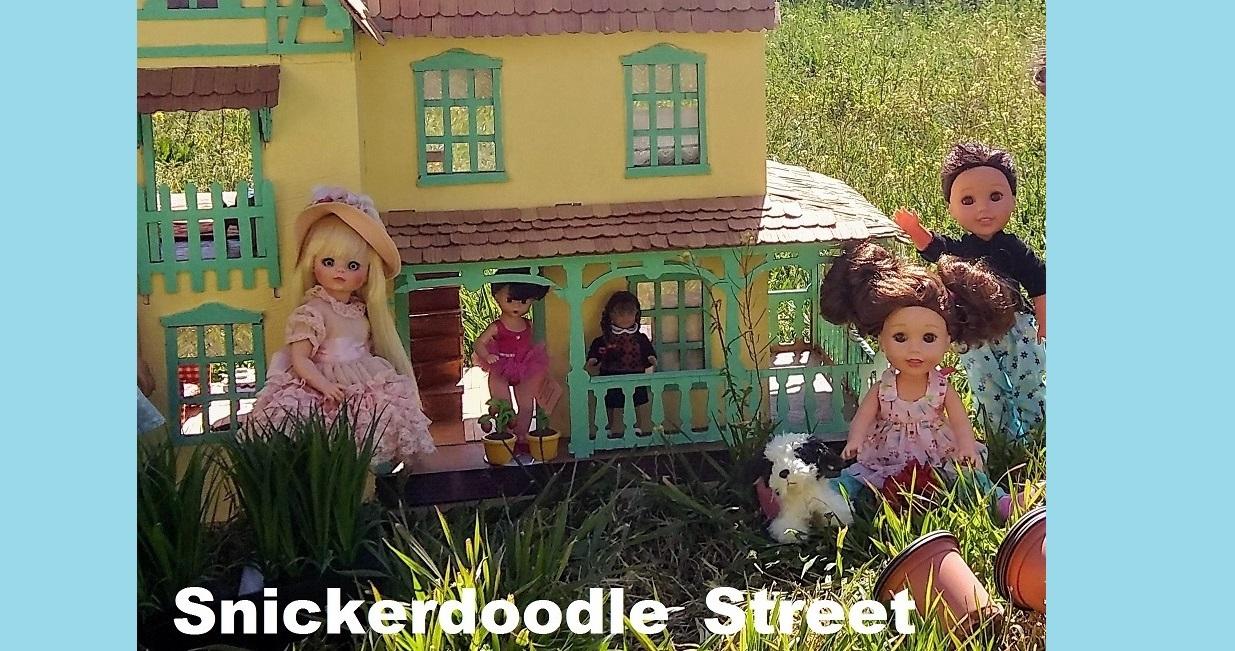 SNICKERDOODLE STREET