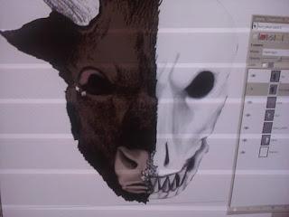 Bull Skull 5