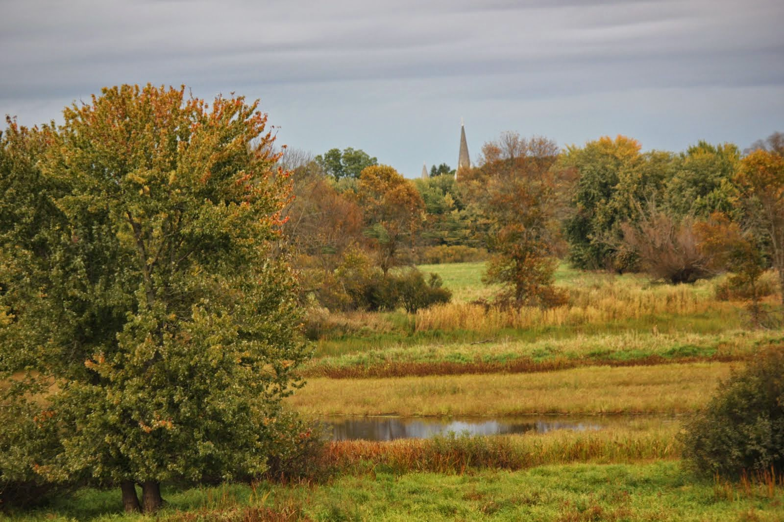 Fall in Princeton