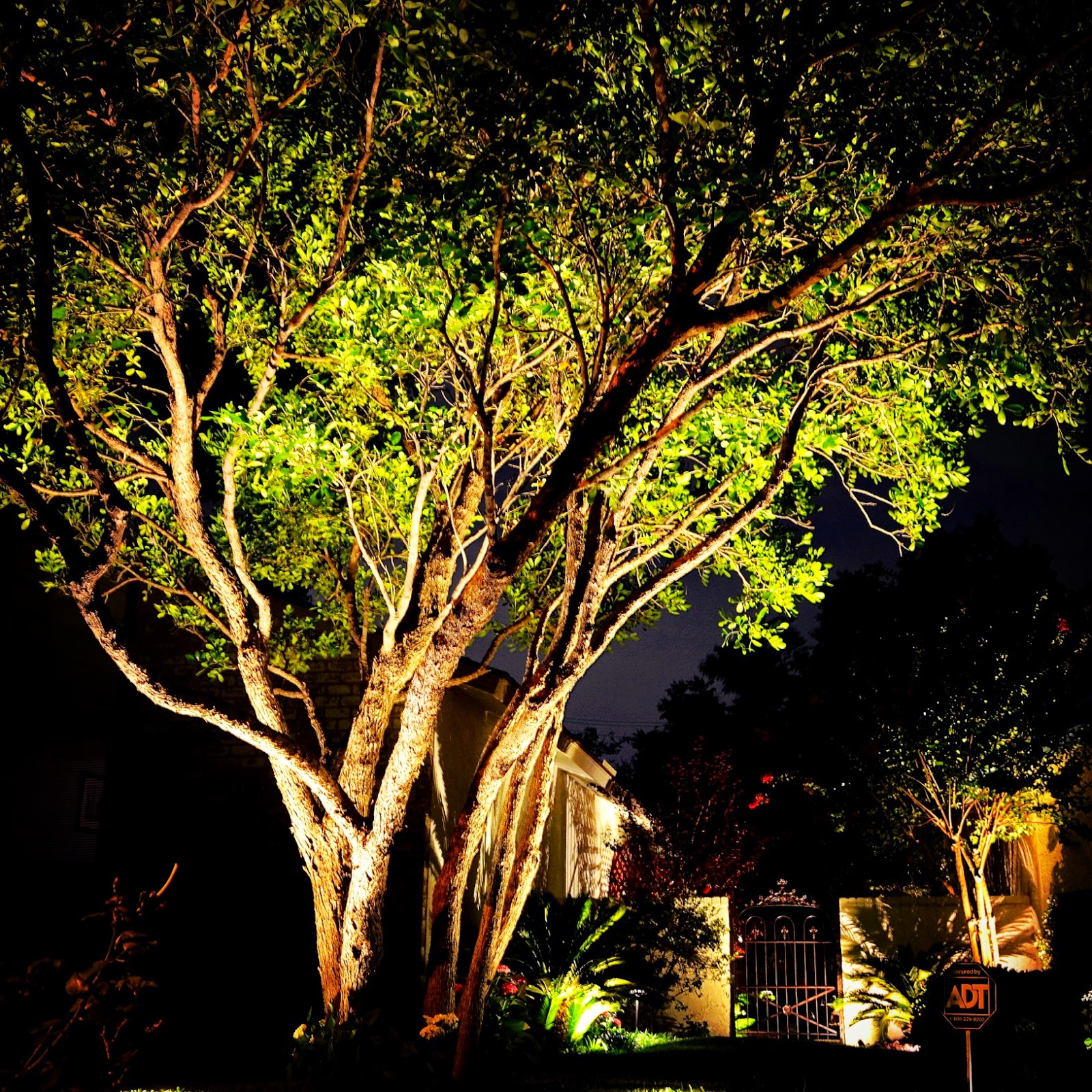 Preferred landscape and lighting san antonio 28 images preferred preferred aloadofball Images