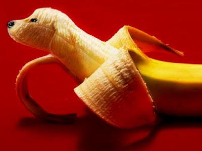 banana carving dog art design
