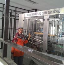 Automatic Washing Filling Capping