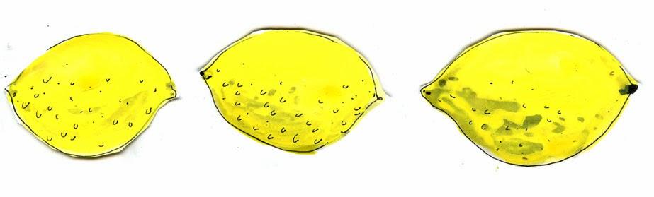 Lemon Illustration by Elizabeth Graeber