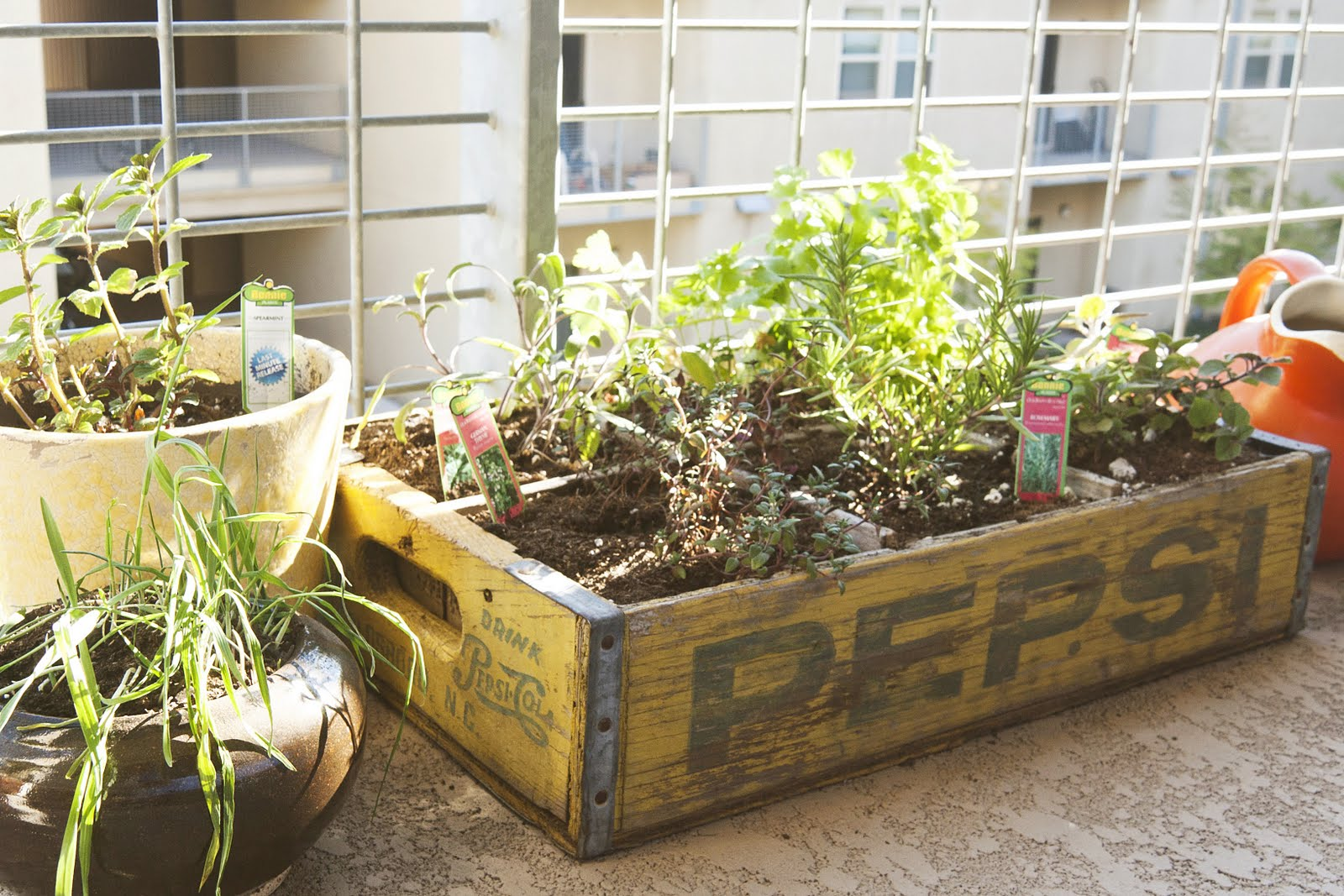 The Crate Herb Garden Tim And I Made Is Working Out Beautifully And Has  Become The Pretty Little Center To A Collection Of Small Plants.