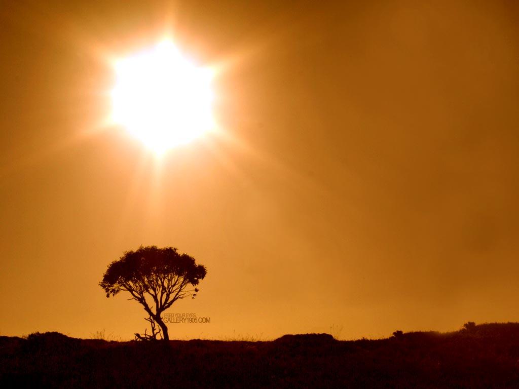 http://1.bp.blogspot.com/-aoKKDxS2Ak0/T3WYGh-0cGI/AAAAAAAAAUk/BZhJRsGvdPc/s1600/sunshine_6.jpg