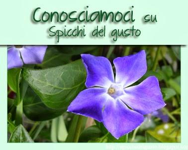 http://spicchidelgusto.blogspot.com/2014/03/5-edizione-conosciamoci.html