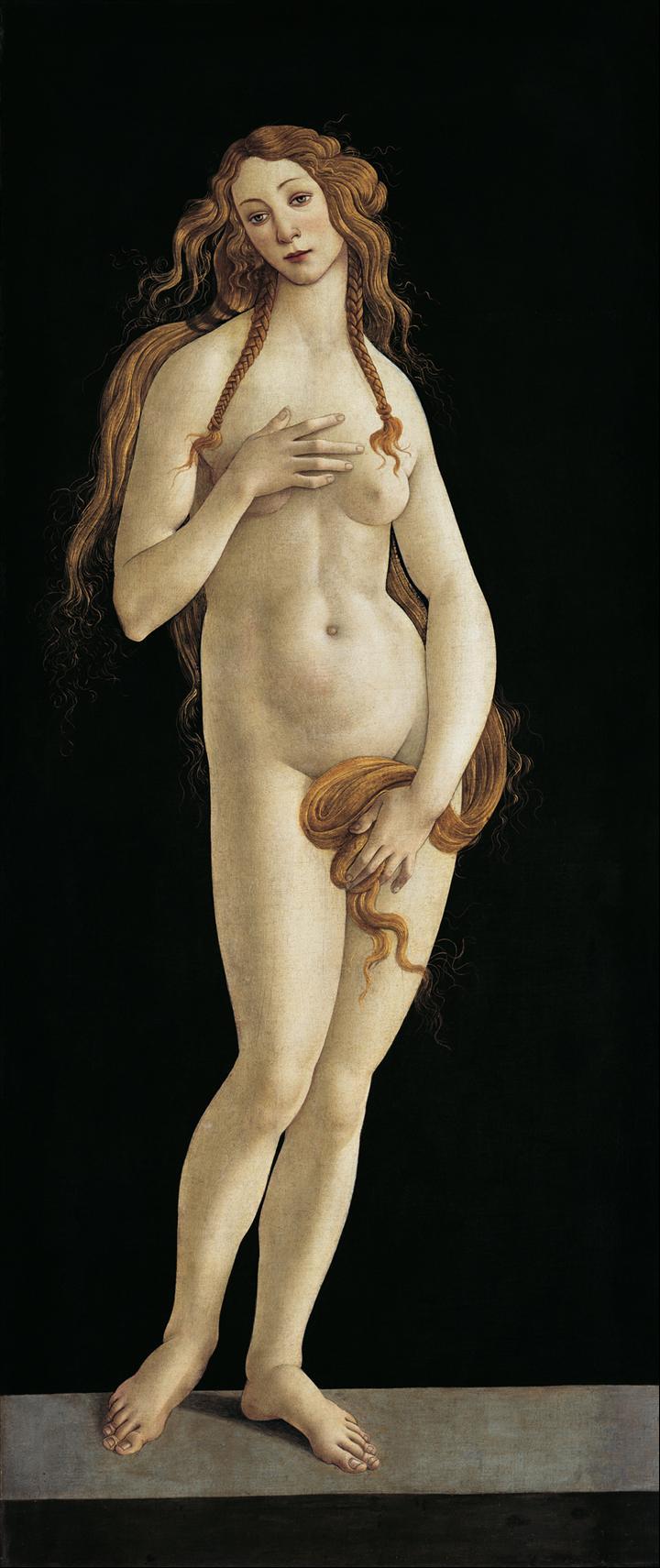 http://1.bp.blogspot.com/-aoiItL5ZmHk/T9lfwr9z8AI/AAAAAAAABjg/xyUMXXEXlew/s0/20091124_Botticelli_Nascita_Venere_dettaglio,+Venere+1482.jpg