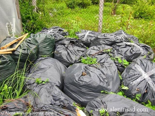 Как сделать перегной из травы в мешках