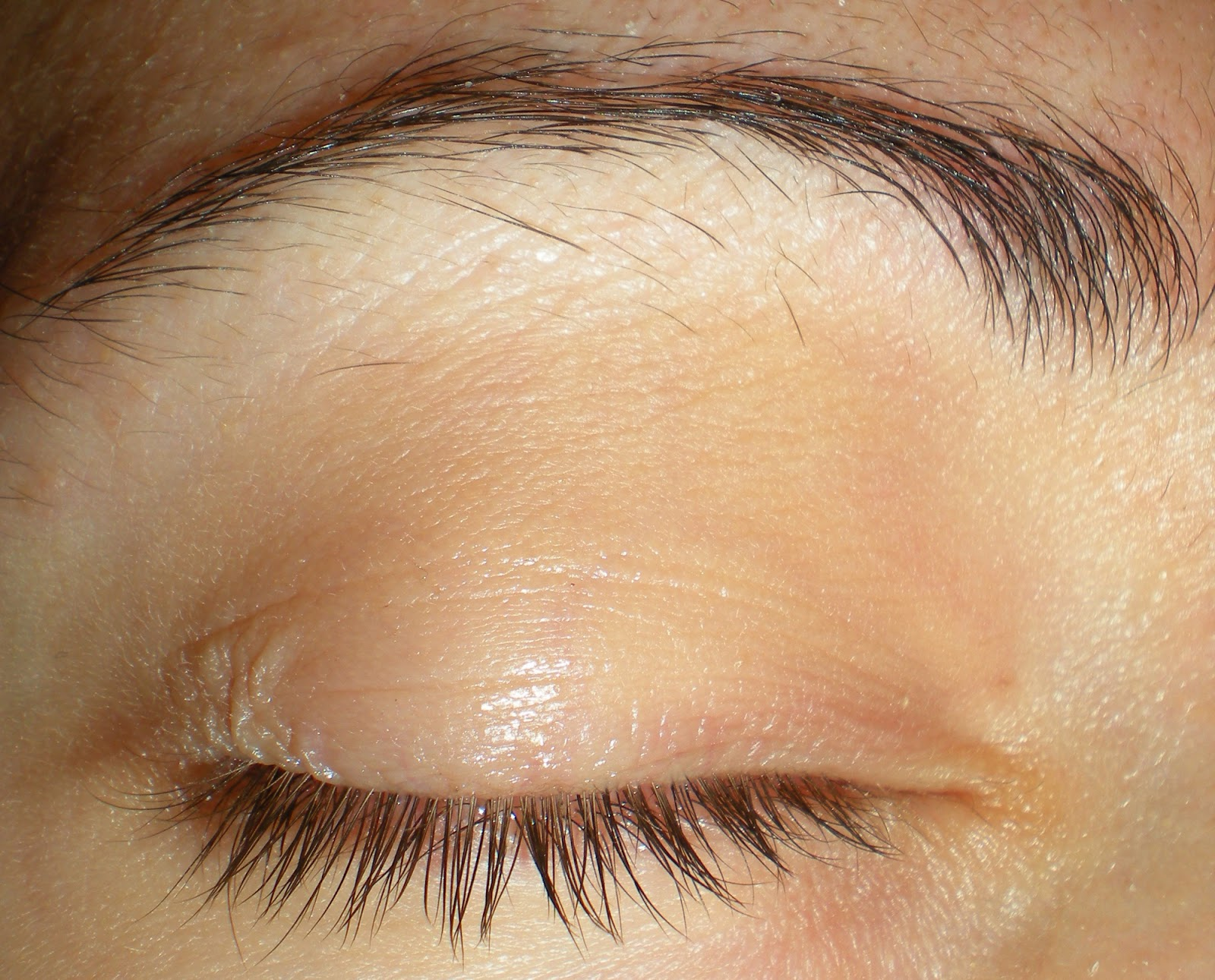 how to grow eyebrows with castor oil