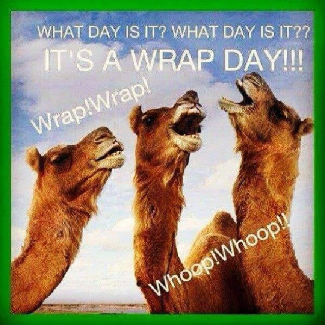 Wrap Day