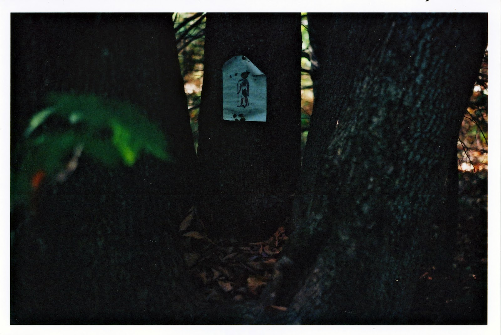 Forest Shrine to Thoth, early 1990's.