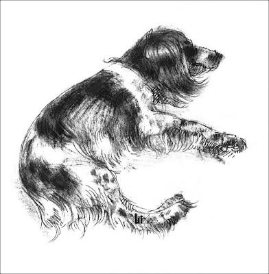 dog drawing by Igor Lukyanov