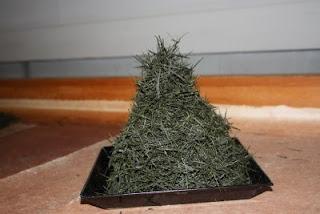 The final product of needle like fresh Temomi Shincha, a handmade Japanese green tea