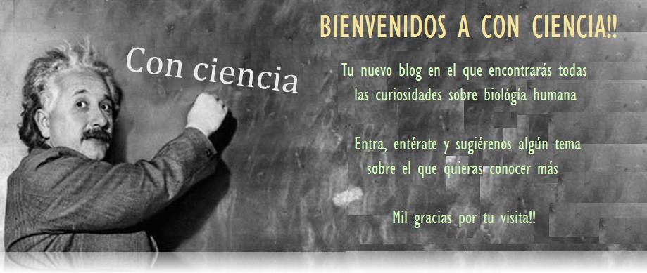 Con-Ciencia