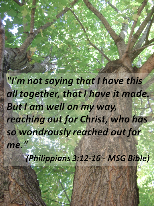 Scripture Sunday #Bible #scripture #holy #word #Philippians #Message