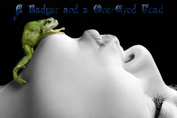 A Badger and a One Eyed Toad
