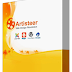 ARTISTEER 4.1.0.59861 FULL VERSION [CRACKED]