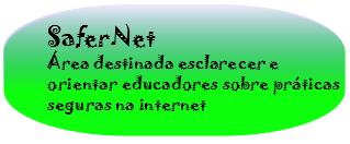 A SaferNet Brasil foi fundada em dezembro de 2005 por um grupo de cientistas da computação, professores, pesquisadores e bacharéis em Direito, a organização surgiu para materializar ações concebidas ao longo de 2004 e 2005, quando os fundadores desenvolveram pesquisas e projetos sociais voltados para o combate à pornografia infantil na Internet brasileira.