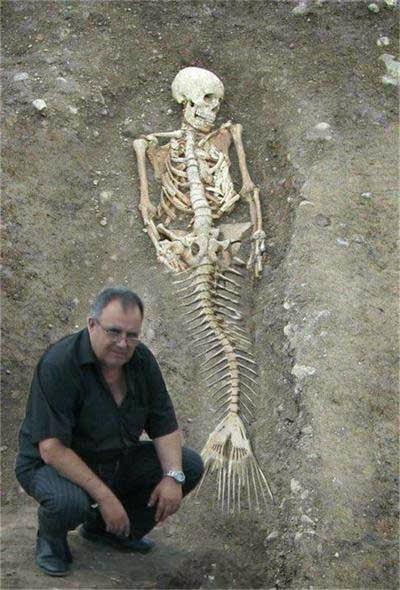 mermaids proof randommusings.filminspector.com