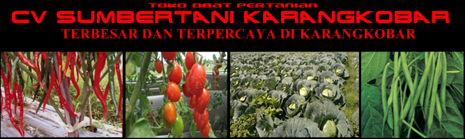 UD Sumber Tani Karangkobar