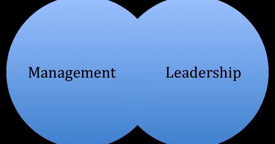 raportul dintre lider si manager