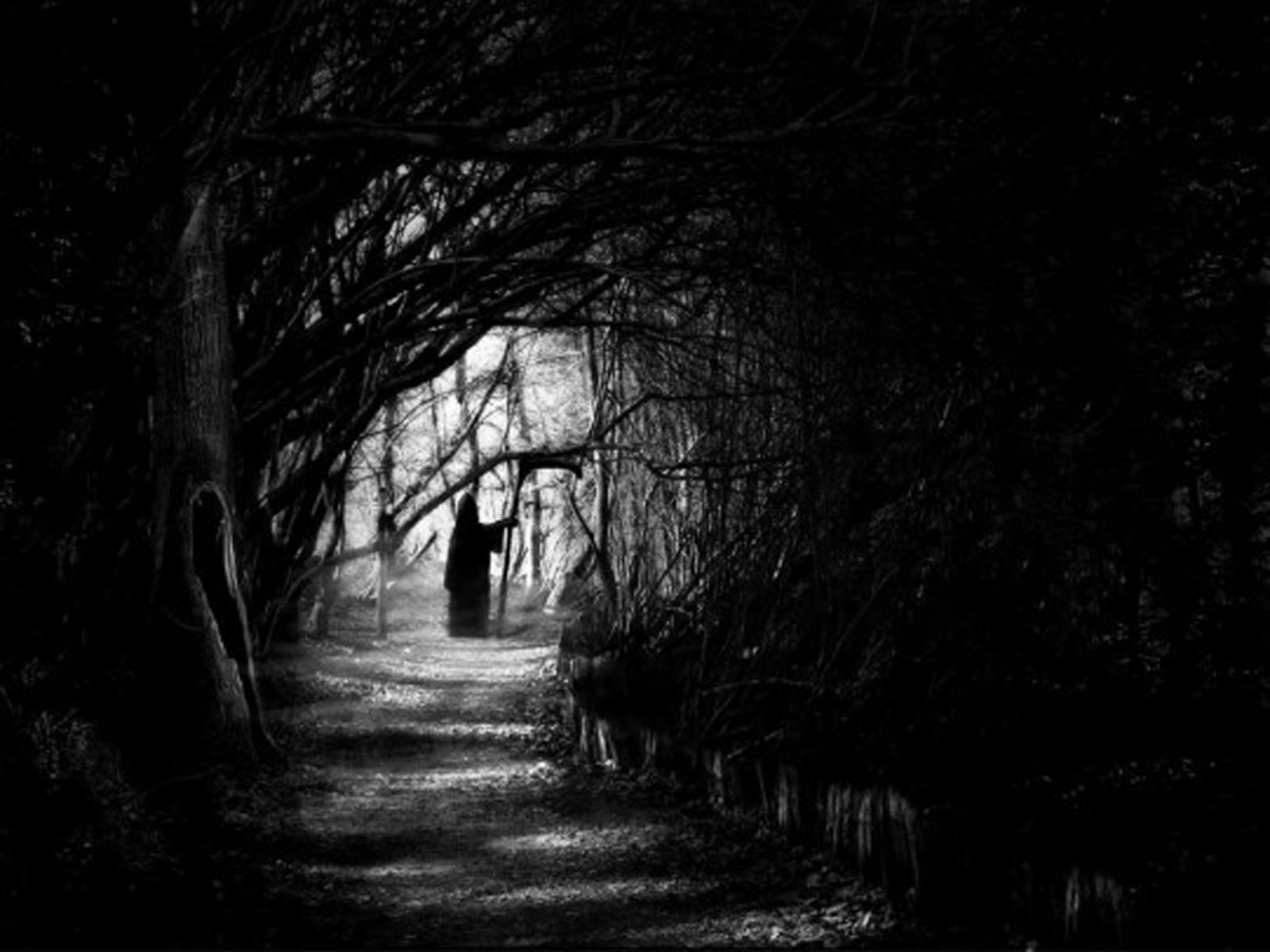 Dark Fall II: Lights Out - Wikipedia