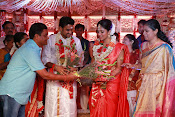Amala Paul Al Vijay wedding Photos gallery-thumbnail-18