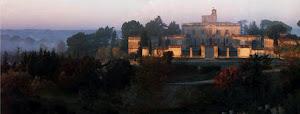Château de Montfrin - Huile d'olive