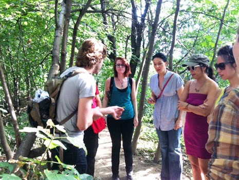 wild edible plant walk new york