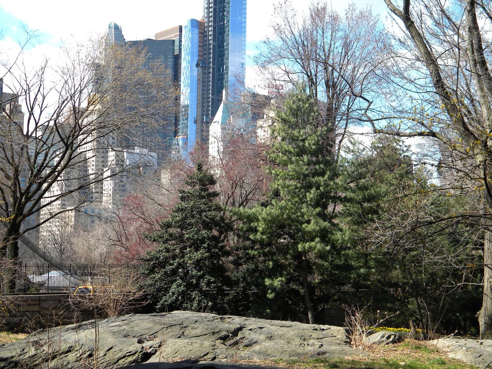 Ice Age Gotham Central Park Skyline