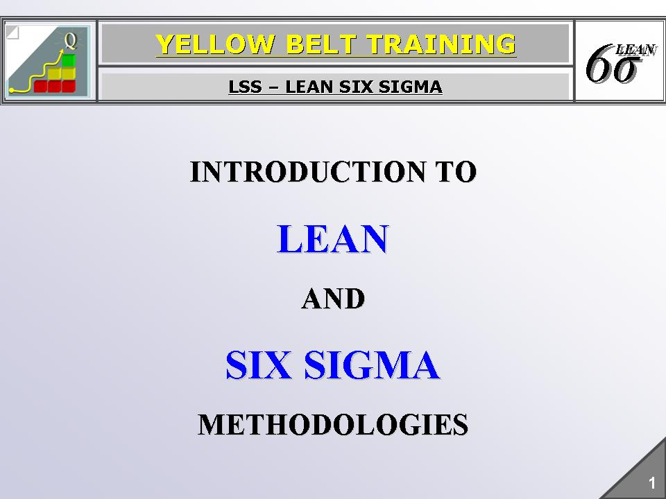 Lean Six Sigma Lean Six Sigma Yellow Belt Training