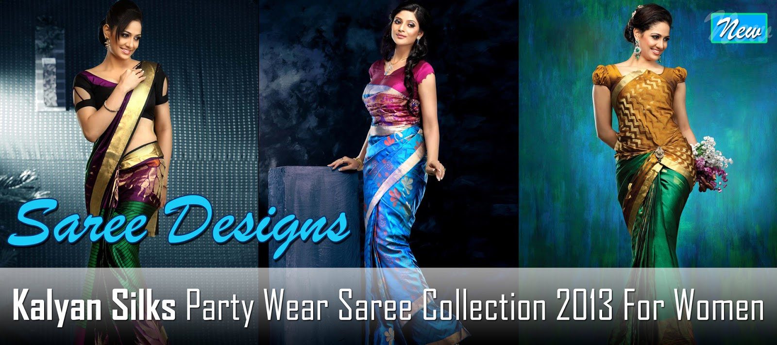 Kalyan Silks Saree's | Party Wear Saree Collection 2013 | Spring